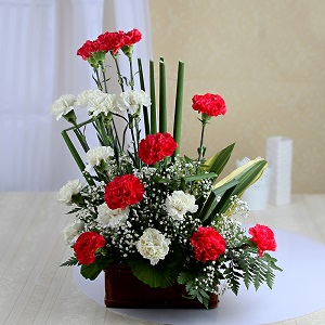 20 red and white carnation basket