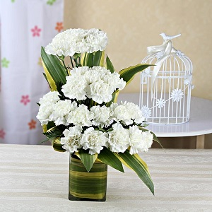 20 white carnations in vase