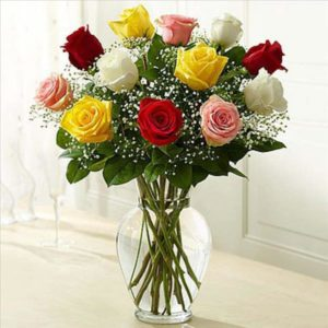 12_assorted_roses_3380mt_92f4023f